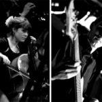 Im Interview: Falco Trio